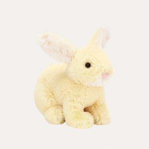 Minilop Lemon Bunny Tiny