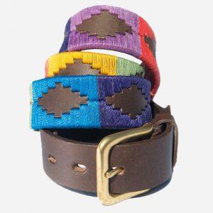 Polo Belt 167 Rainbow 80cm
