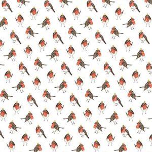 Robins Christmas Gift Wrap