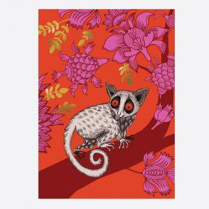Bushbaby Card