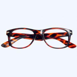 Billi Reading Glasses Tortoiseshell