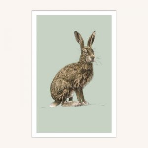 Ben Rothery Hare Notecards Set