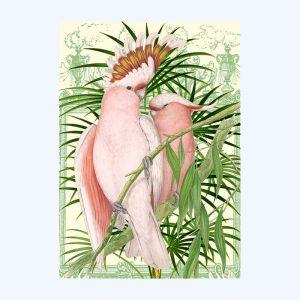 Pink Parrots Card