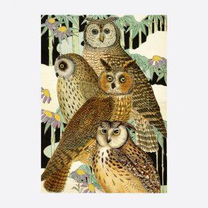 Owls in a Japanese Garden Card